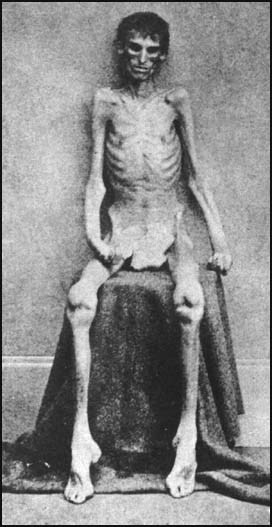 What African Thanked The Hand Of This White Family For Dying And Suffering For their Freedom In The United States Under President Abraham Lincoln The First Republican President Of the United States?
