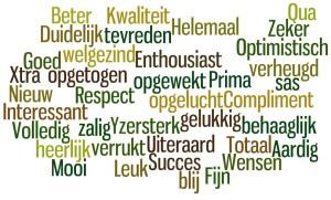 rasja.nl-voortgangsgesprek-functioneringsgesprek-beoordelingsgesprek-positief effect