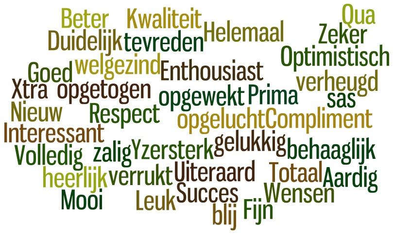 Het voeren van plannings-, voortgangs-, en resultaatgesprekken | rasja.nl