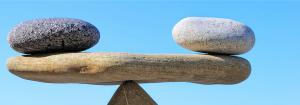 rasja.nl-omgaan met emoties in je training-balanceren tussen inhoud en emotie