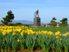 tulips at the memorial