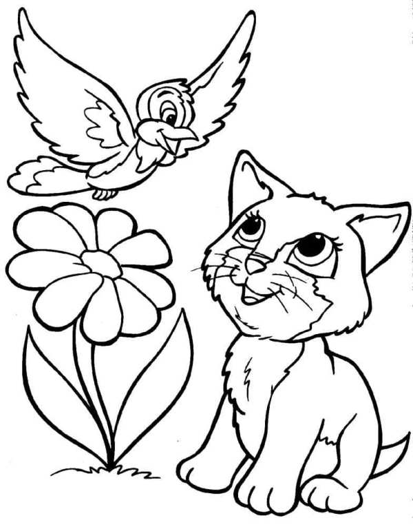 free cat coloring pages # 11