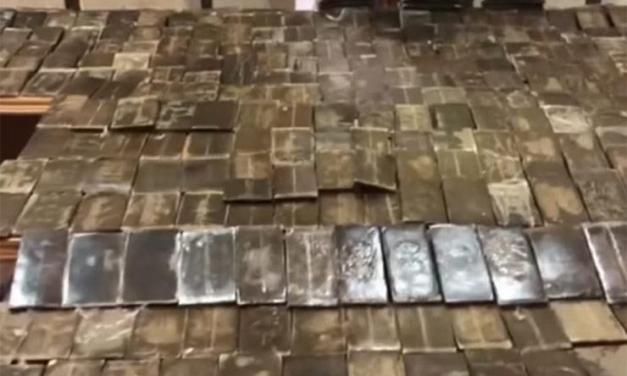 ضبط 300 طربة حشيش بحوزة عاطل في الإسكندرية