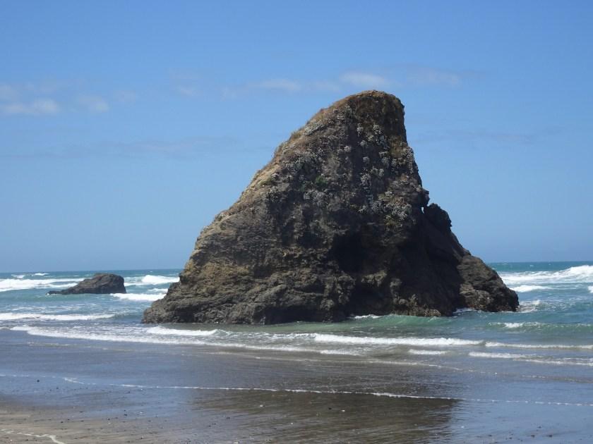mendocino coast (4)