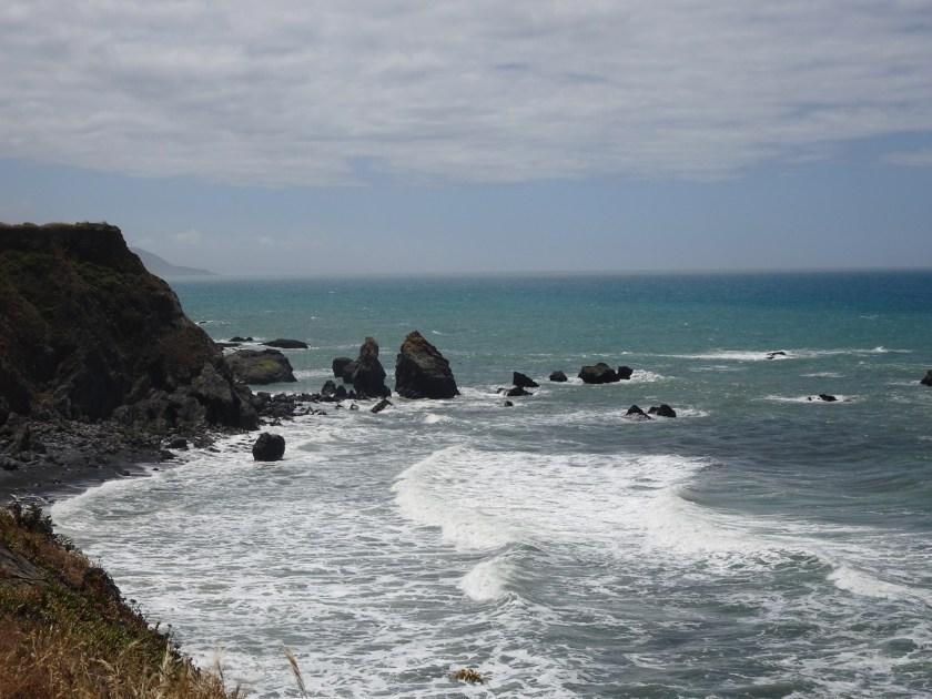 mendocino coast (6)