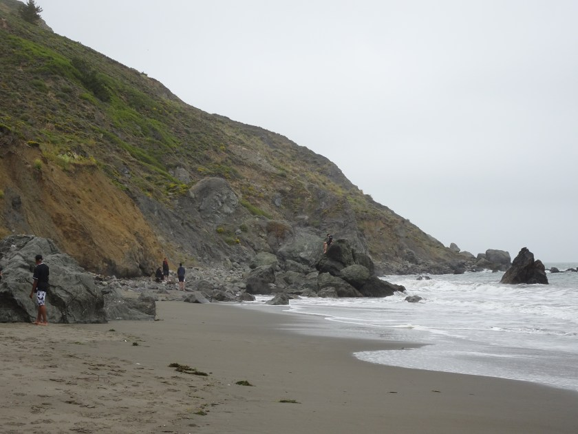 Sausalito california Muir beach san francisco (12)
