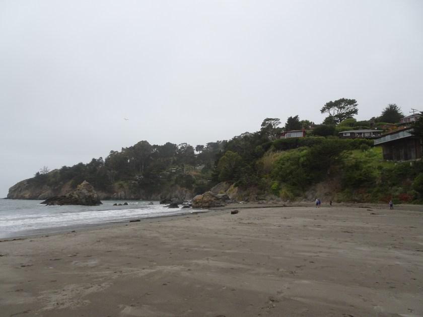 Sausalito california Muir beach san francisco (8)