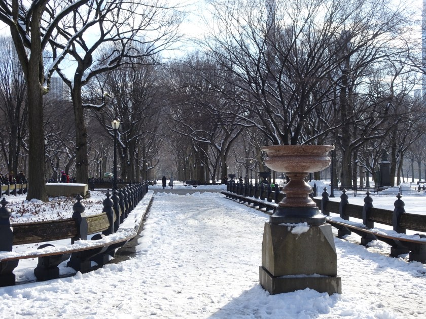 new york 2019 central park nevado (1)