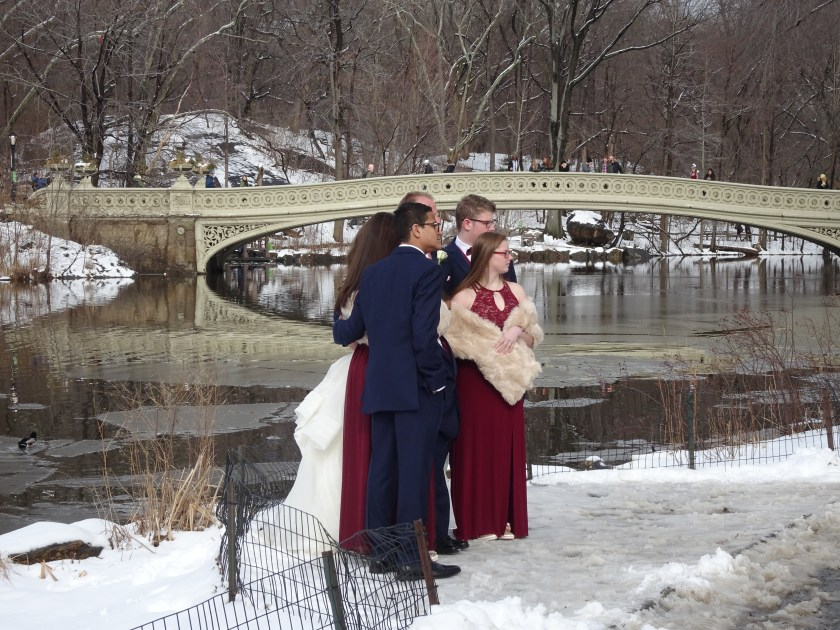 new york 2019 central park nevado casamiento
