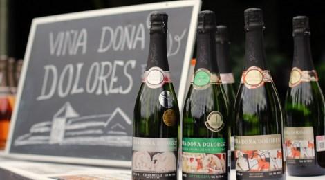 ¡Muy pronto la tercera edición del Bubbles Fest de Finca Sala Vivé de Freixenet en Querétaro!
