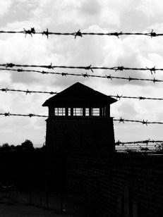 Freiheitsstrafe