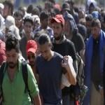 Poruka pape Franje za Svjetski dan selilaca i izbjeglica