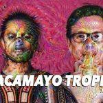 Guacamayo Tropical @ Rastro Lab Madrid, Septiembre 2020