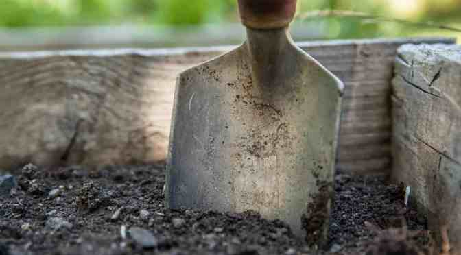 "<span class=""entry-title-primary"">Preparing and planting a spring garden</span> <span class=""entry-subtitle"">Great tips for getting the most out of your garden this year</span>"