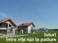 rateladezvoltator.ro_terenuri_ieftine_loturi-padure