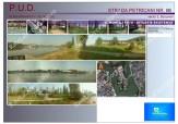 RateLaDezvoltator.ro_EXCLUSIVITATE_Teren_Petricani_1650mp_05 mont foto