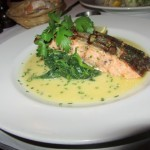 Waterloo Bar and Kitchen 2 Grilled Scottish Salmon