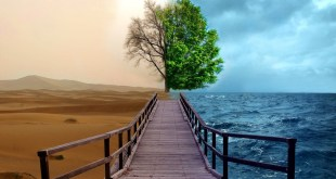 Past Karma Can Affect Present Day Life