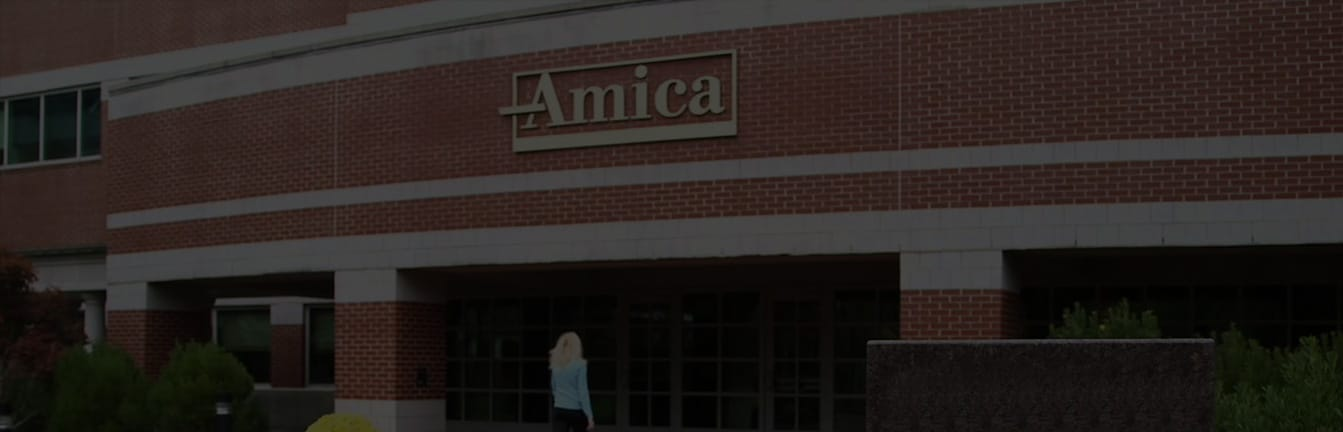 Amica Car Insurance Review Rates For Insurance