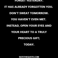 """Forget yesterday. It has already forgotten you.  Don't sweat tomorrow. You haven't even met.  Instead, open your eyes and your heart to a truly precious gift; today."""
