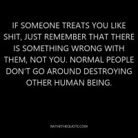 If someone treats you like shit, just remember that there is something wrong with them, not you. Normal people don't go around destroying other human being.