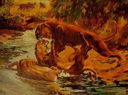 Eusmilus fighting Nimravus, painting by Charles R. Knight