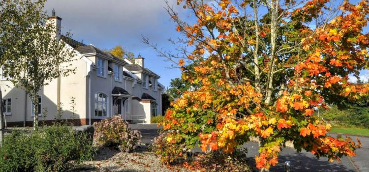 Summer Availability at Rathmullan Cottages