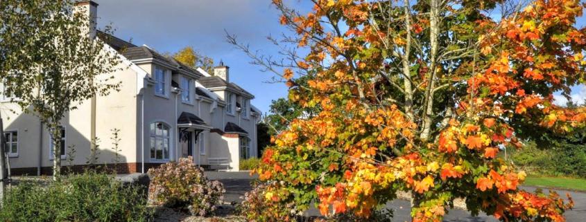 Rathmullan Autumn