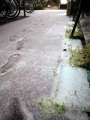 雪が積もっています(2010年4月17日朝)