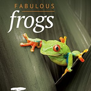 Nature-Fabulous-Frogs-0