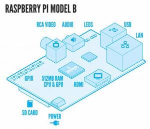 Raspeberry1