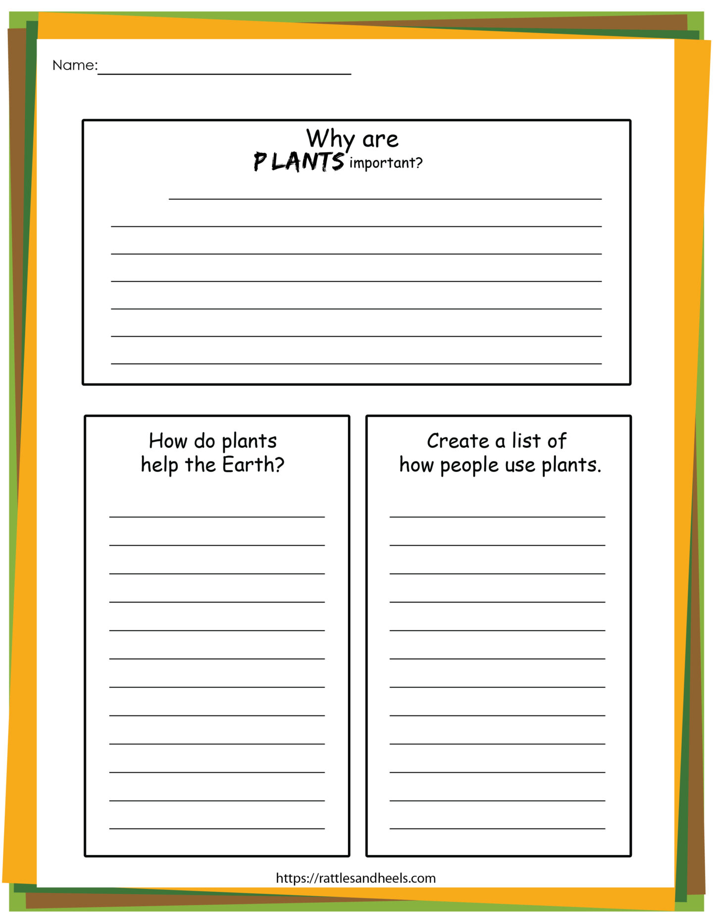 Plant Life Cycle Worksheets Free Printables For Kids