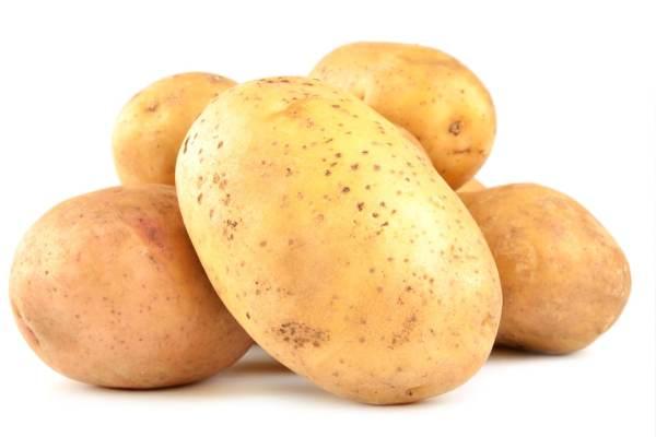 Mehlig kochende Kartoffeln gewaschen