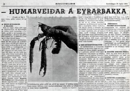 Humarveiðar á Eyrarbakka blaðagrein - 1954