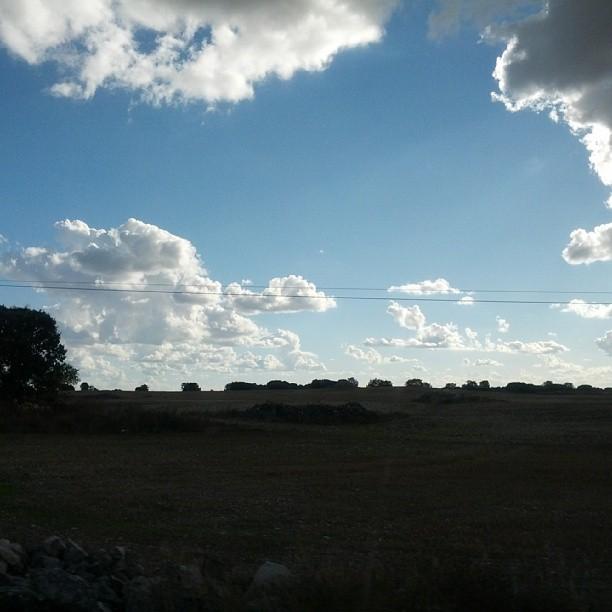 Acercándonos a la Ribera del Duero #caminoalasjpod13 #jpod13