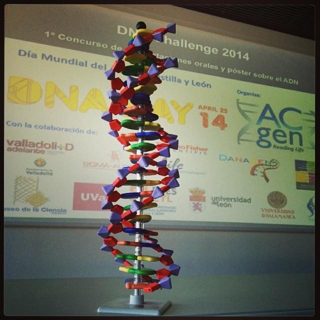 Maravillosa doble hélice #DNAchallenge #DNADay #DiaDelADN