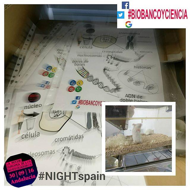 Ya estamos listos para la #NIGHTspain. #ciencia #eventos #Granada