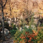 fall color overview look at Pere Lachaise Cemetery