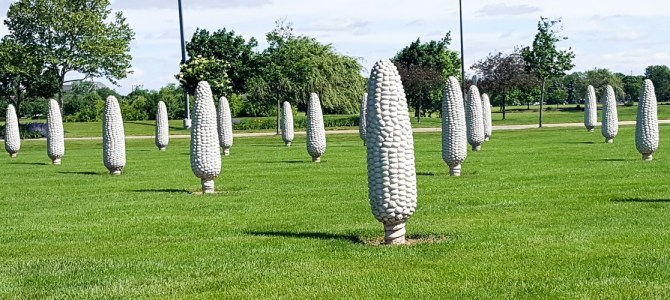 Field of Corn – Weird Roadside Attraction