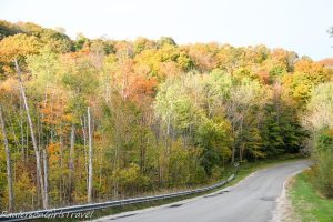 curvy road in Michigan with colorful fall leaves