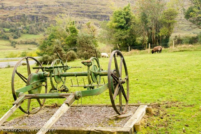 Traditional farm machinery The Hay Tosser with sheep in the background at Molly Gallivan's