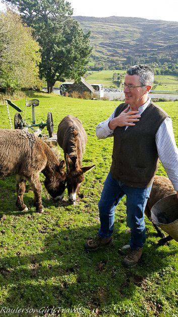 Stephen feeding the animals at Molly Gallivan's Farm