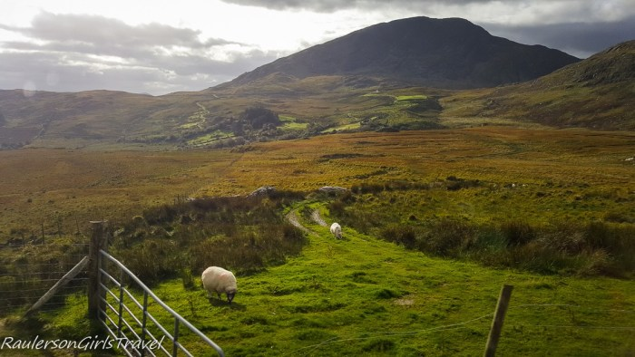 Ireland countryside in the Ring of Kerry
