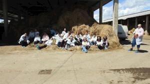 vizitainhd2016-fermeleado-pozagrup