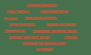 Astronomiebegeisterte Sternenjägerinnen Citizen Scientists Neugierige Träumer Macherinnen Compitüftler Astrofotografinnen Geschichtenerzähler Himmelsbeobachterinnen Menschen ohne Grenzen Designerinnen imaginierter Räume Entdecker unbekannter Welten Denkerinnen des Unvorstellbaren