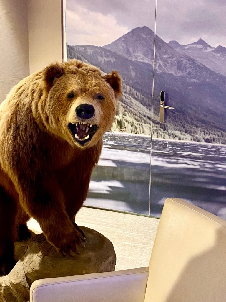 Urlaub mit Bär