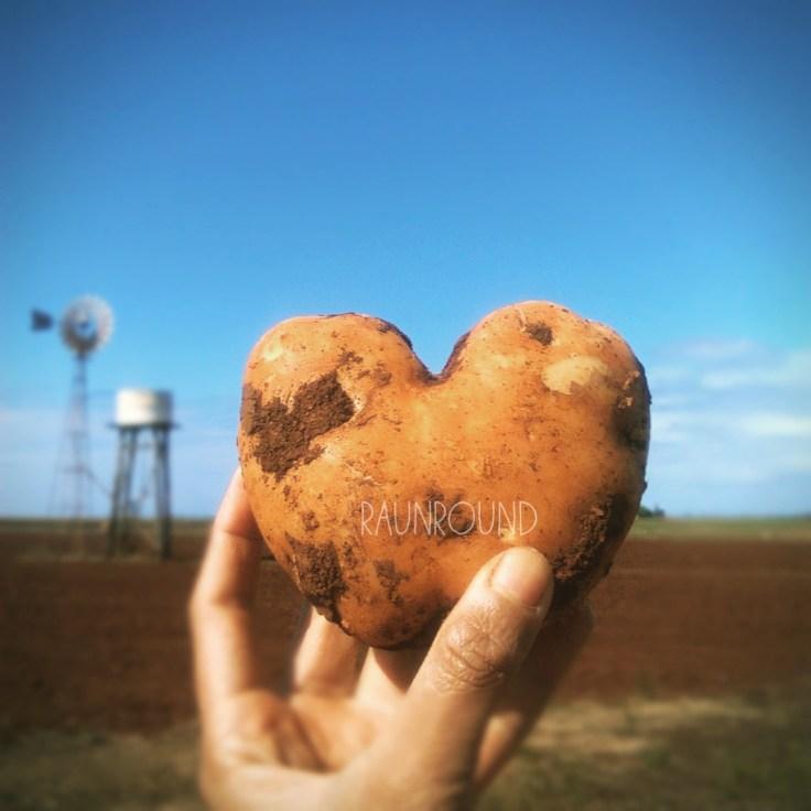 kentang romantis