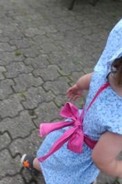 blaue Blümchen mit Pink