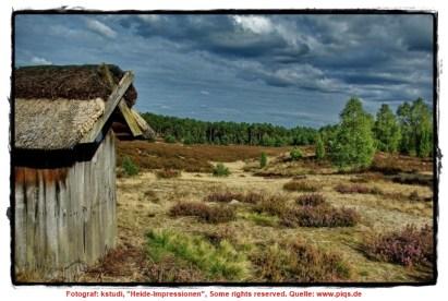 Heide-Impressionen