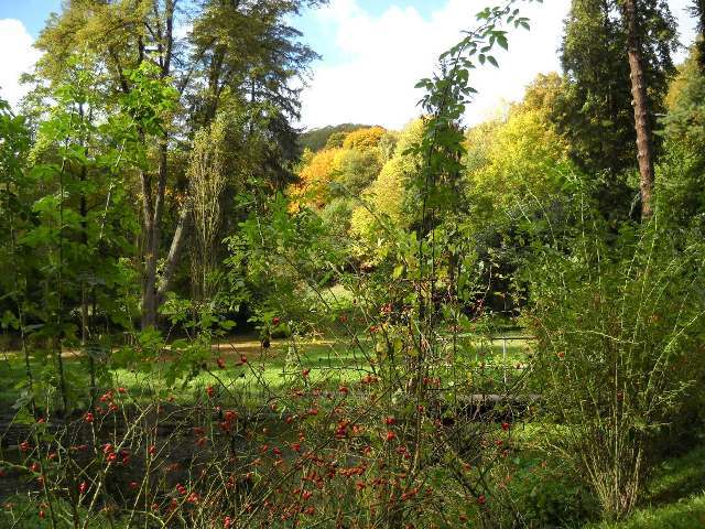 Marienberger Park
